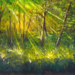Erdőrészlet 3